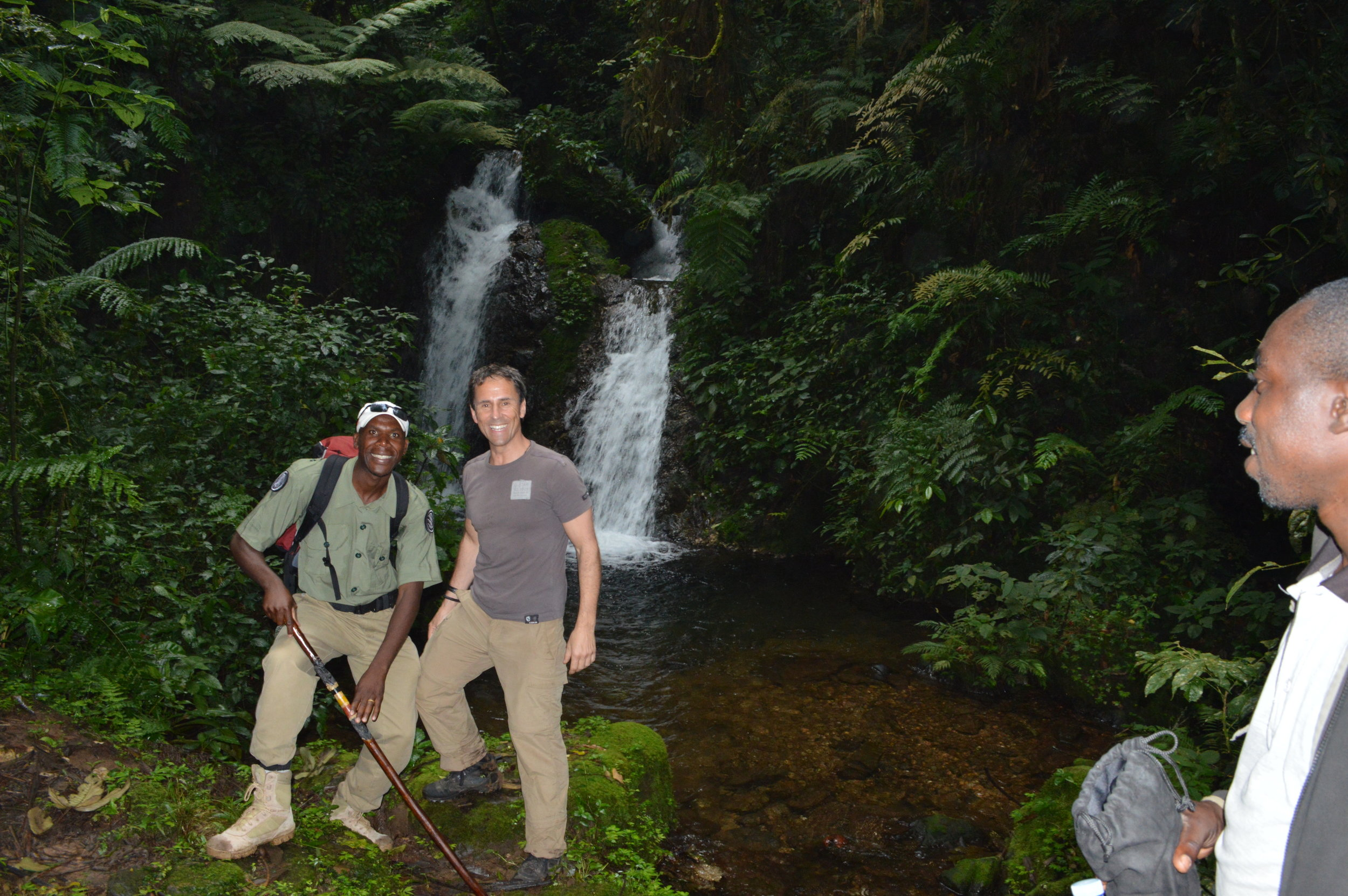 A forest adventure to Munyaga waterfall walk Bwindi impenetrable national park.