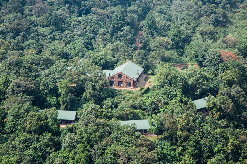 Sophisticated luxury Clouds Mountain gorilla lodge- Bwindi impenetrable national park.