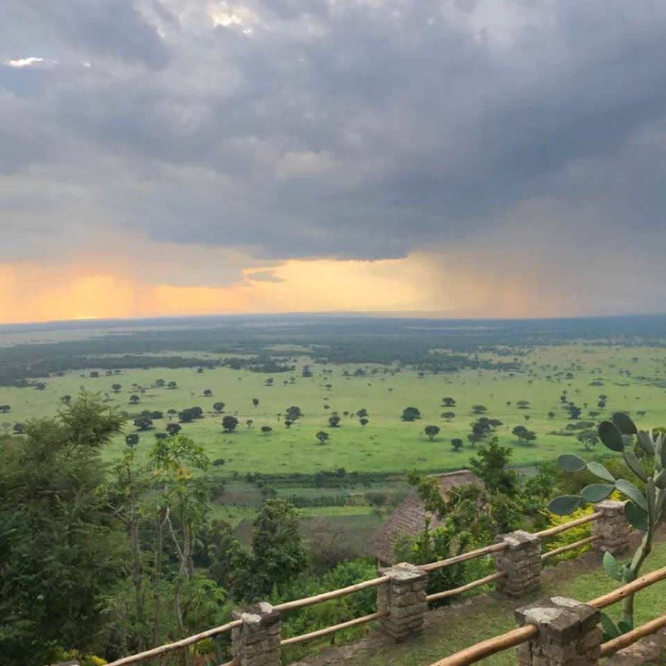 Remember that you can travel beyond gorillas and discover Queen elizabeth national park,just an hour drive from Bwindi forest in Uganda.