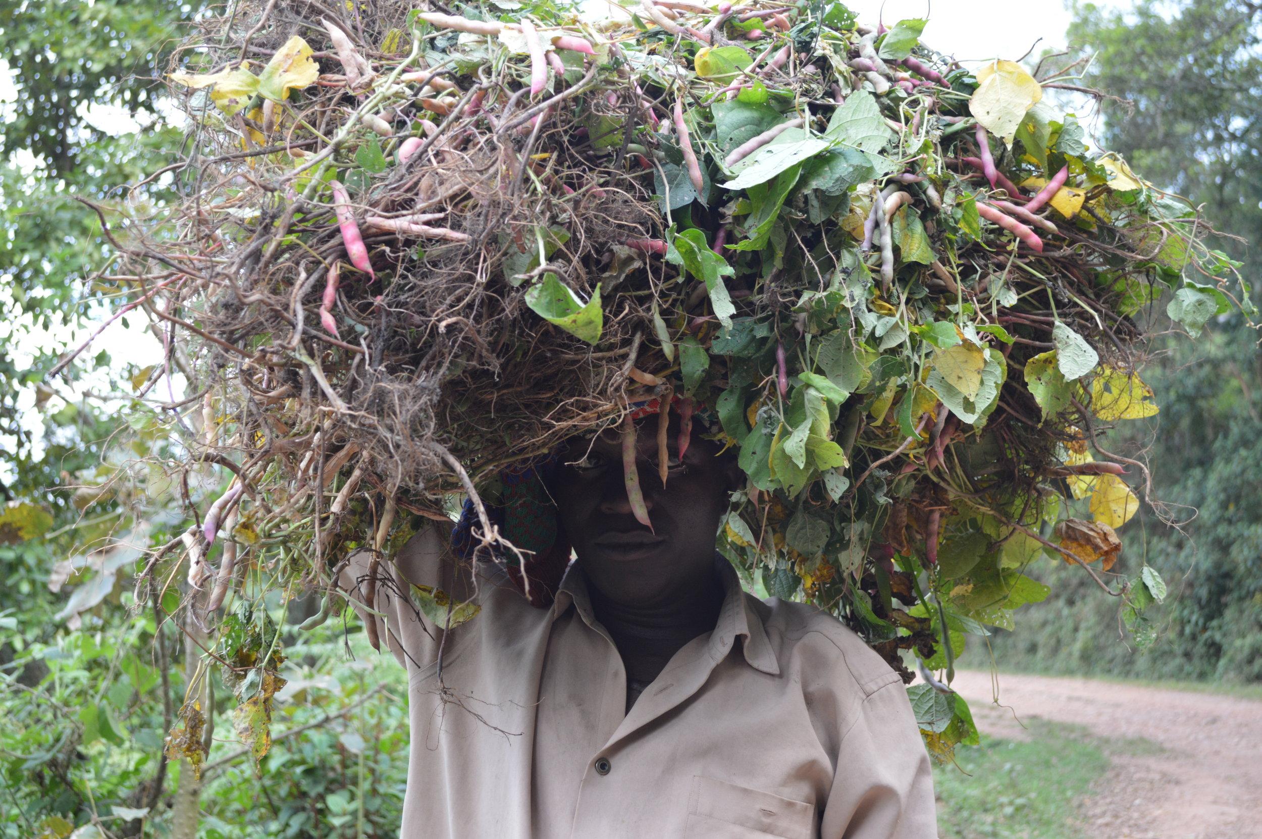 Traditional life around Bwindi.jpg