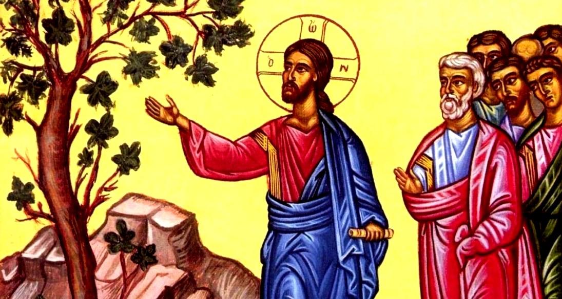 jesus and barren fig.jpg