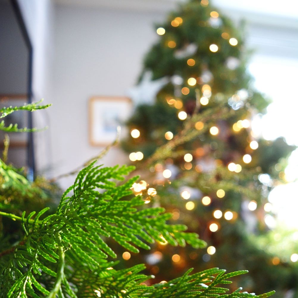 Cedar boughs from  Wildflower Florist  in Swift Current add bright green color to a holiday garland.