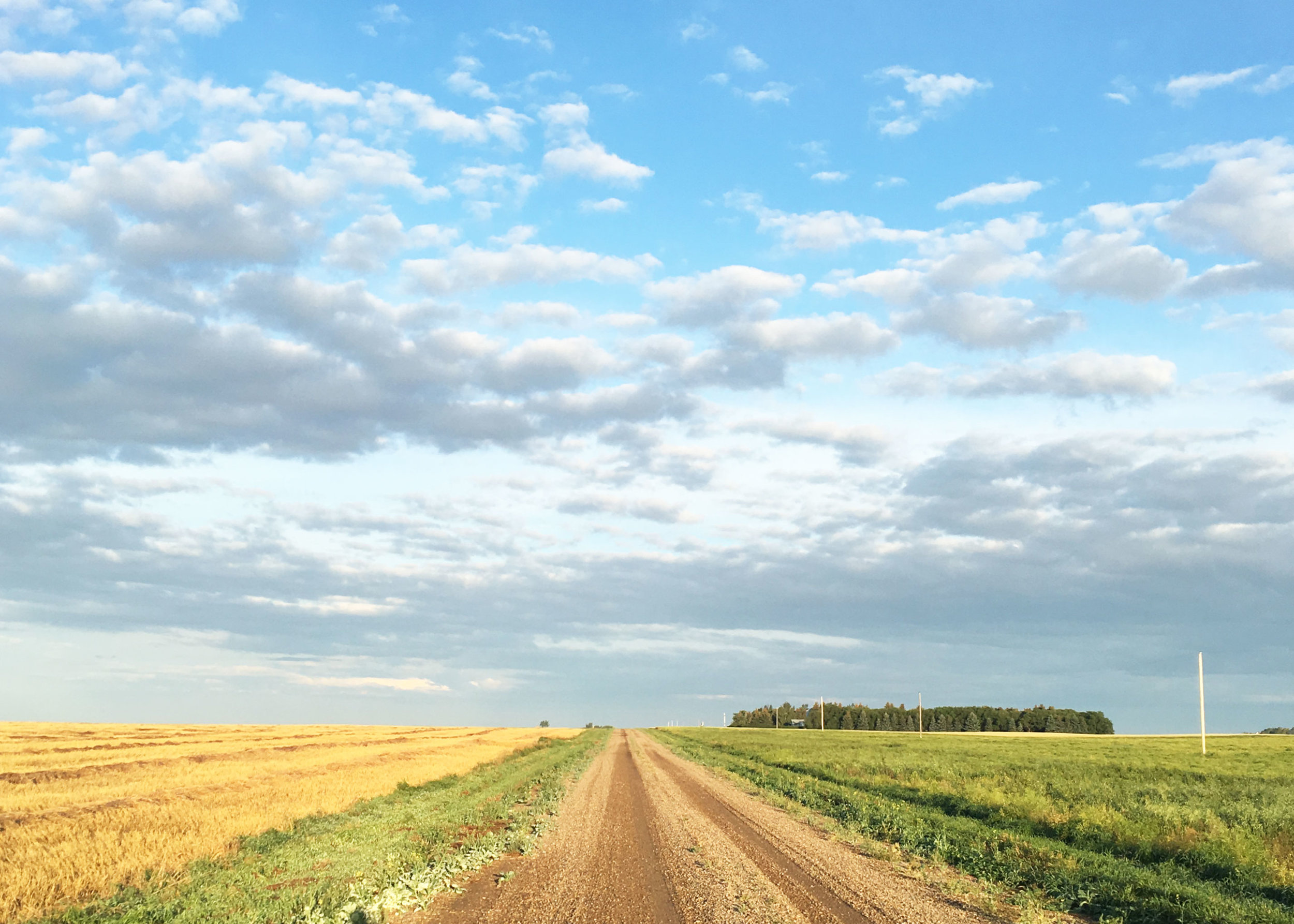 About-Farmers-Daughter-Interiors-Farm2.jpg
