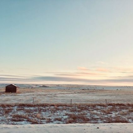 A photo I snapped on the way to a client meeting that inspired our Fireclay Tile 'Winter Prairie' color palette
