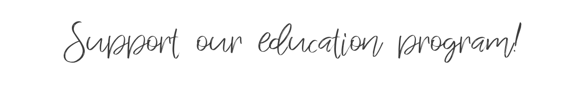 support-education-program-kurandza-text.jpg
