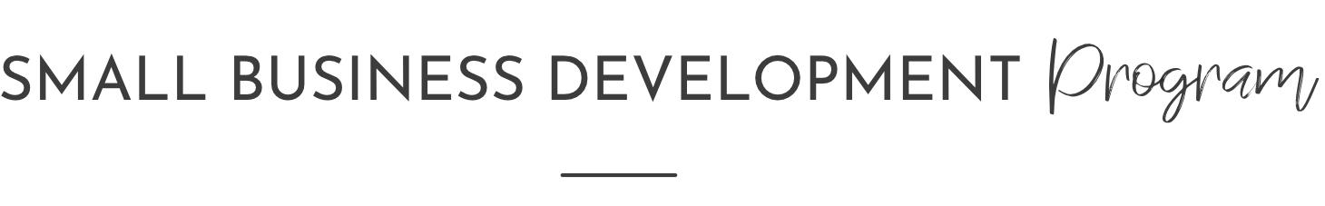 small-business-development-program-kurandza.jpg