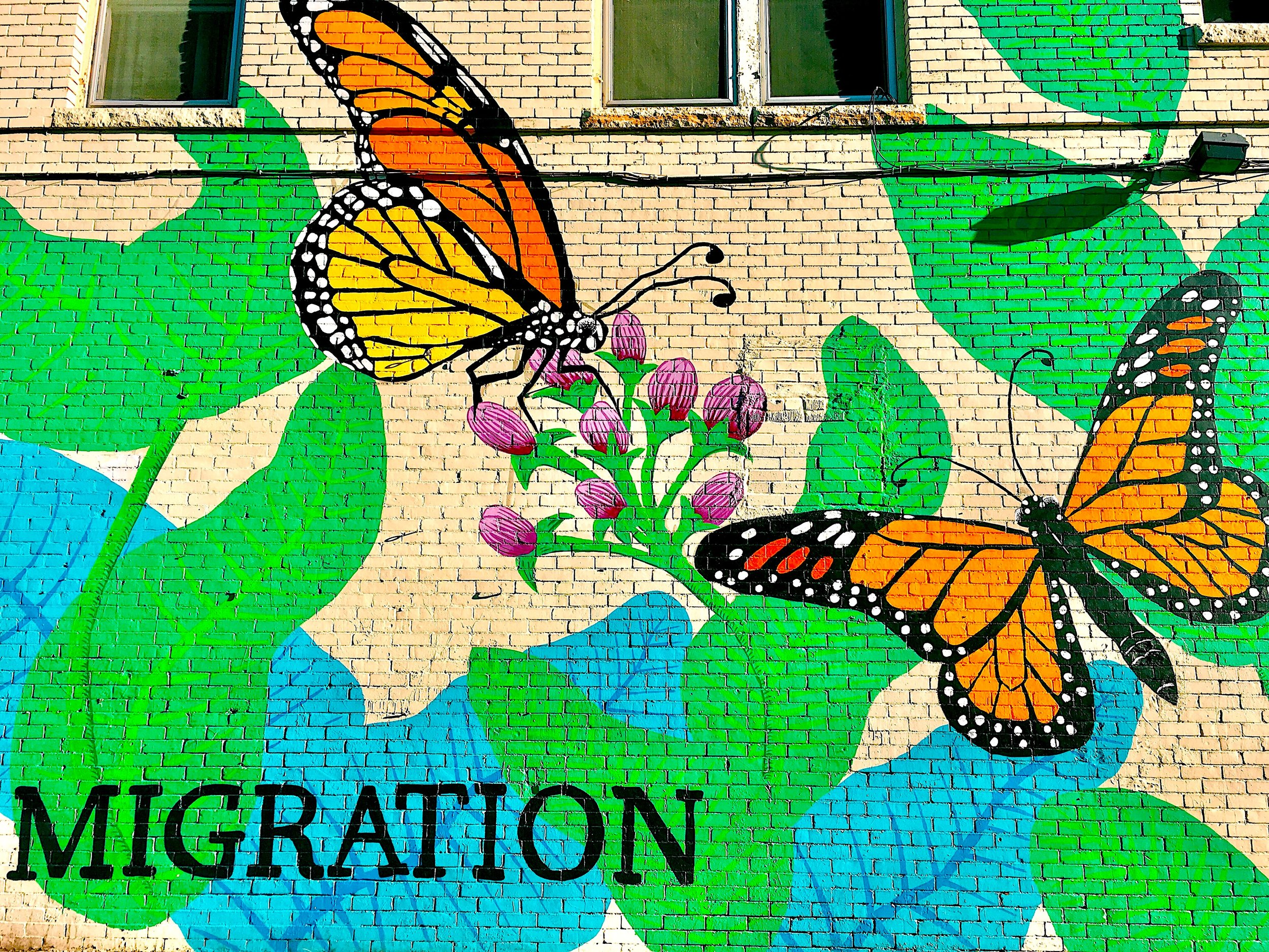"[Photo of a mural of monarch butterflies with green and blue leaves and purple buds of flowers with the word, ""MIGRATION,"" written in black. Photo by  MM .]"