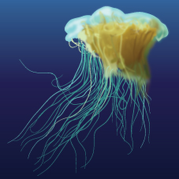 Ghost Jellyfish