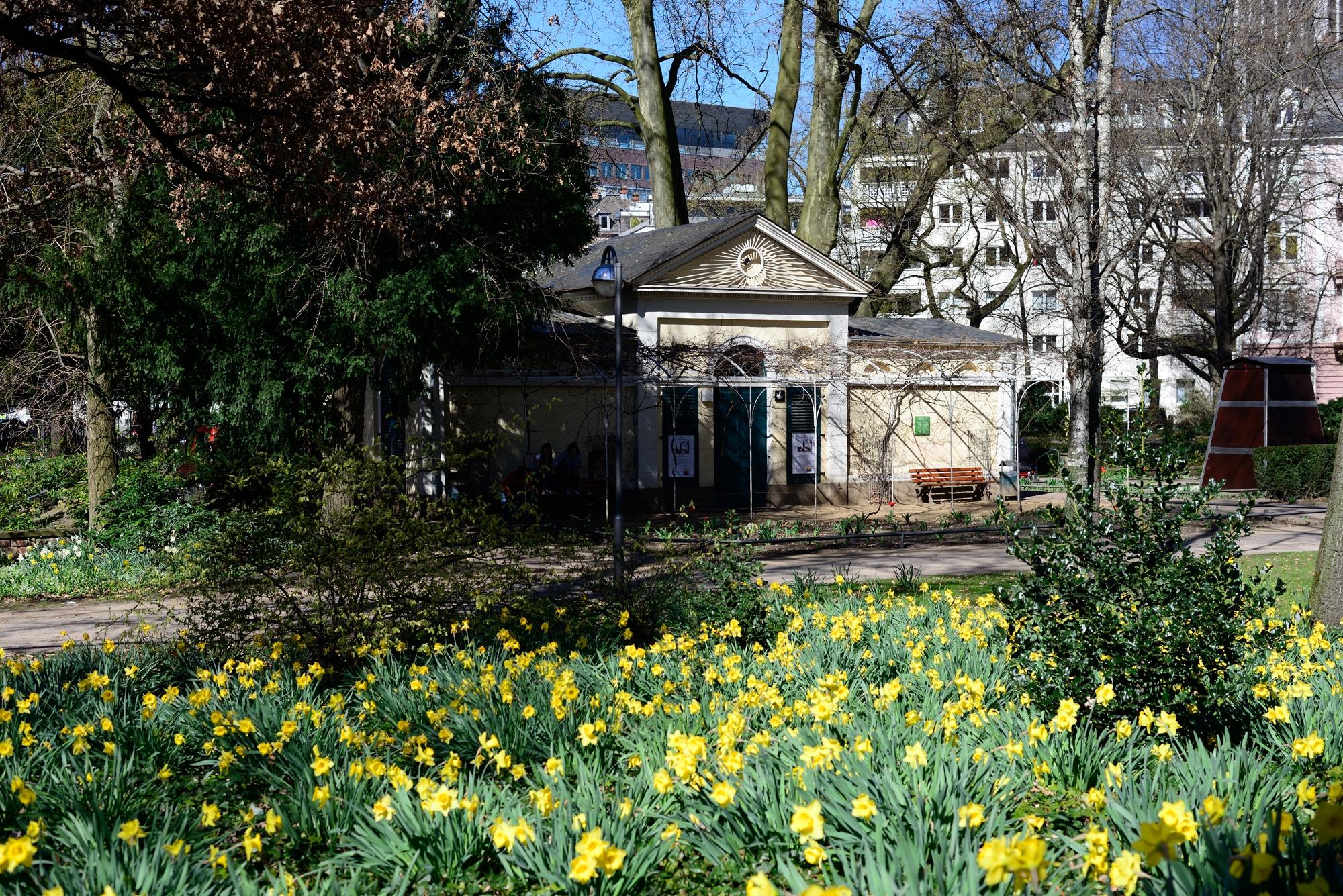 Nebbiensches Haus