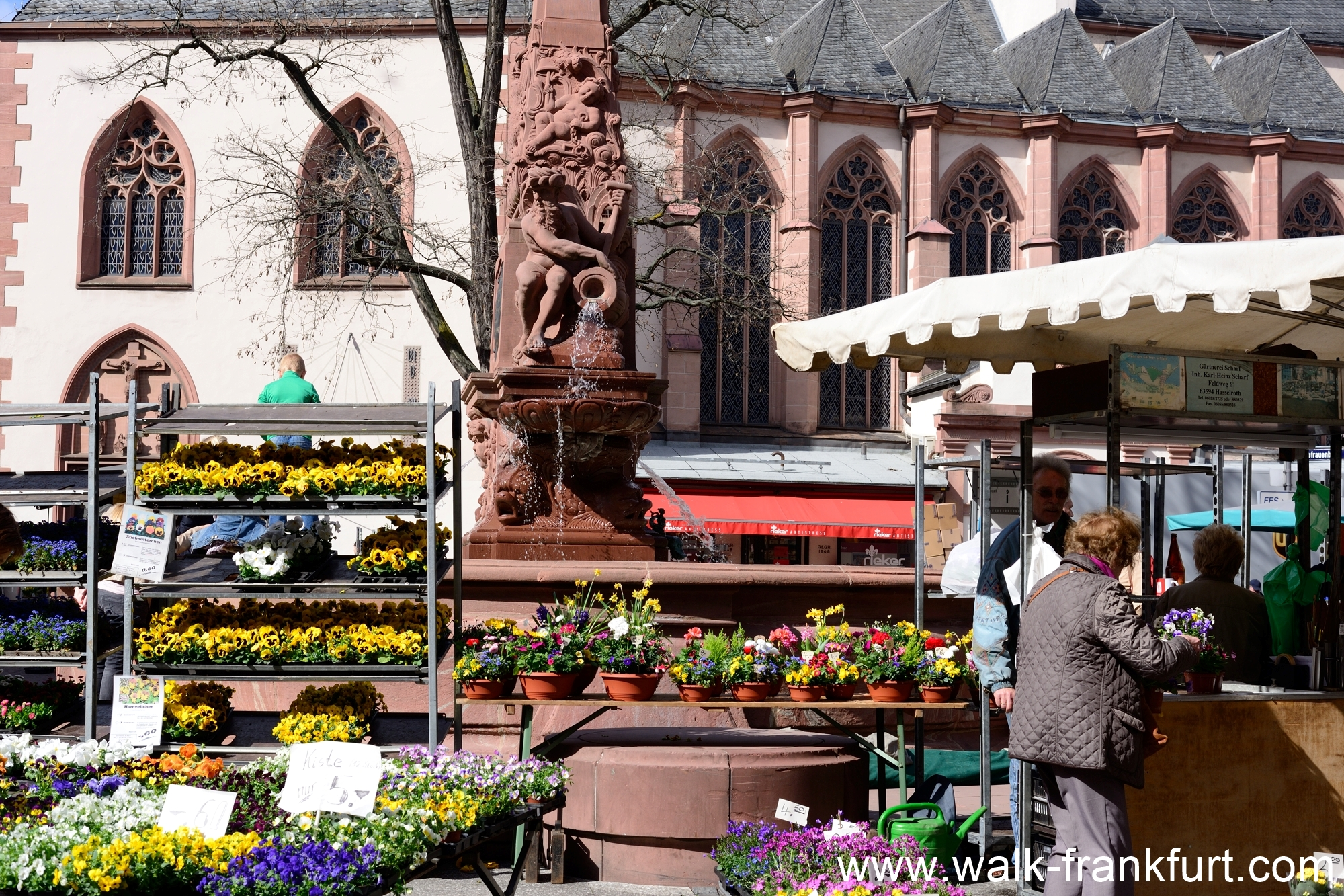 Liebfrauen Church and flower market