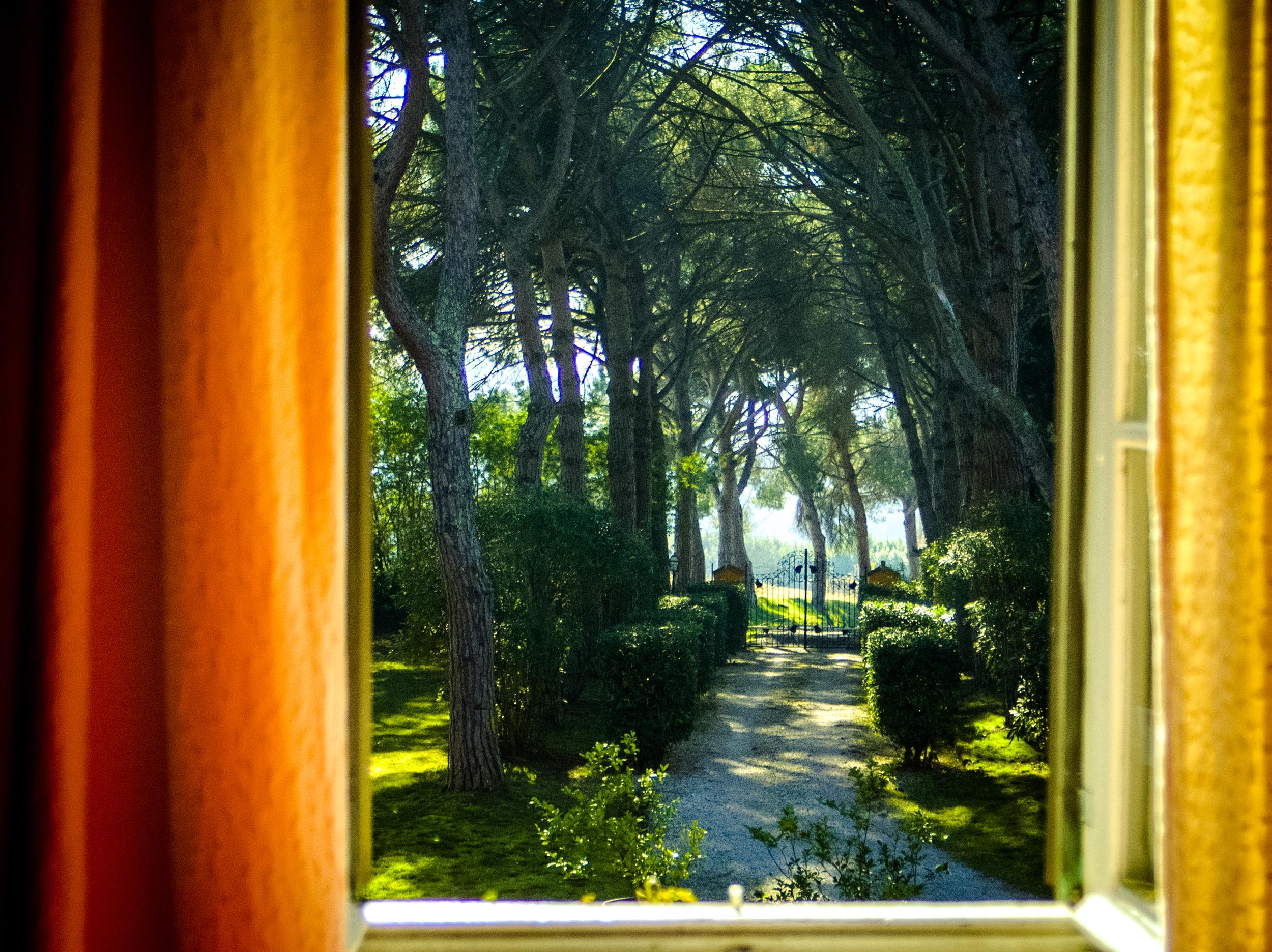 """Mappa Mondo"" double room view"