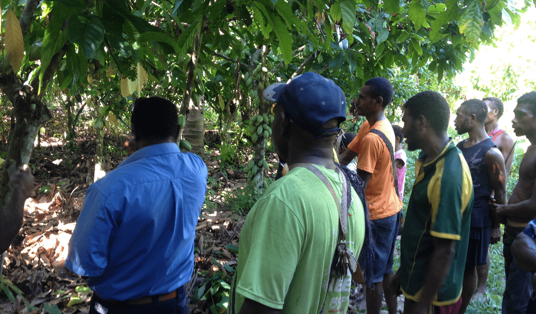 smallholder farmer training