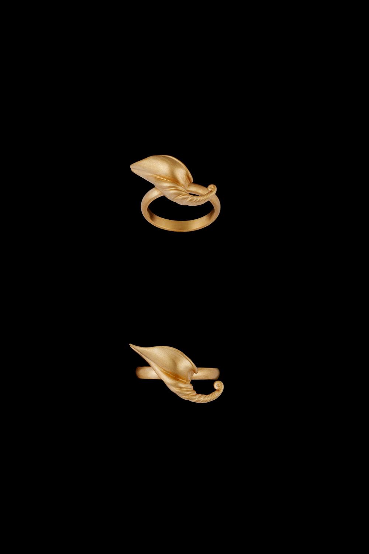 Horn Of Plenty - Ring