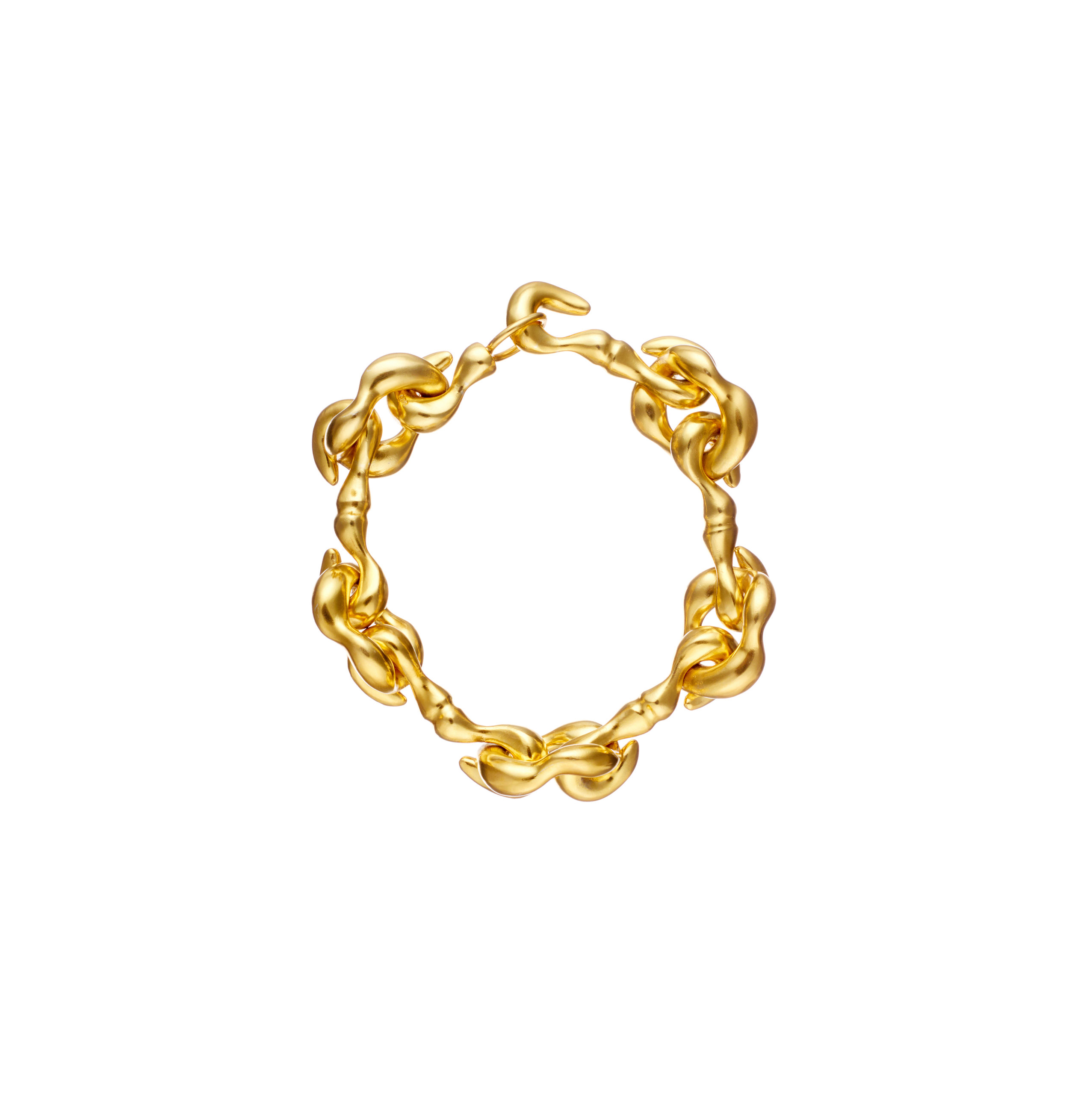Agrifi Hooks - Bracelet