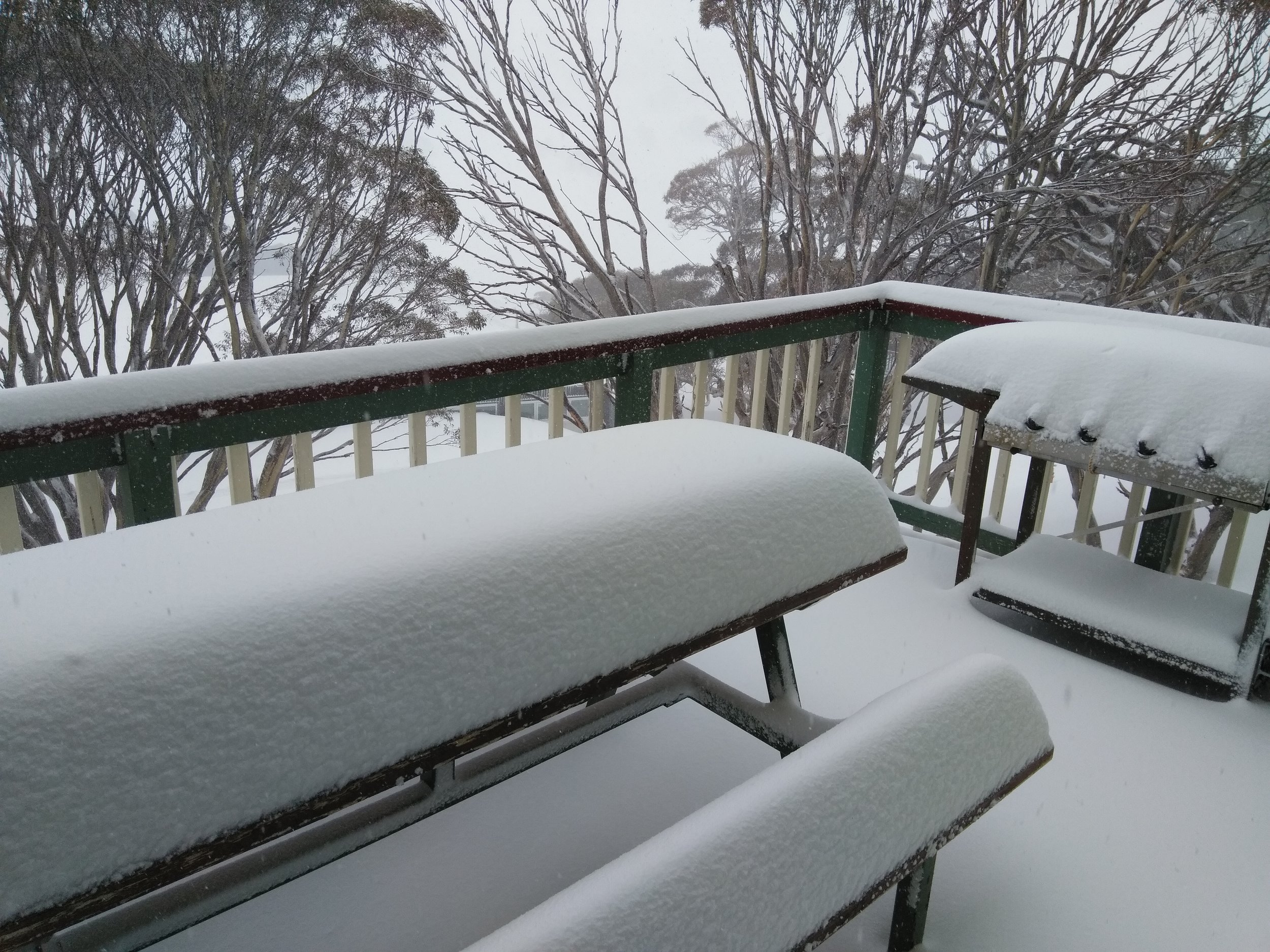 Snow fall lower balcony - Charlotte Pass SASC lodge