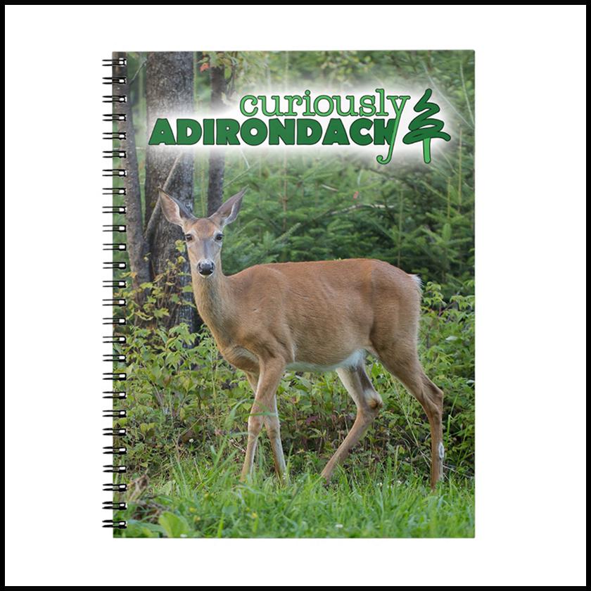 ca-deer-notebook-1.png