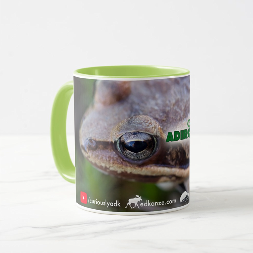ca-frog-2.png