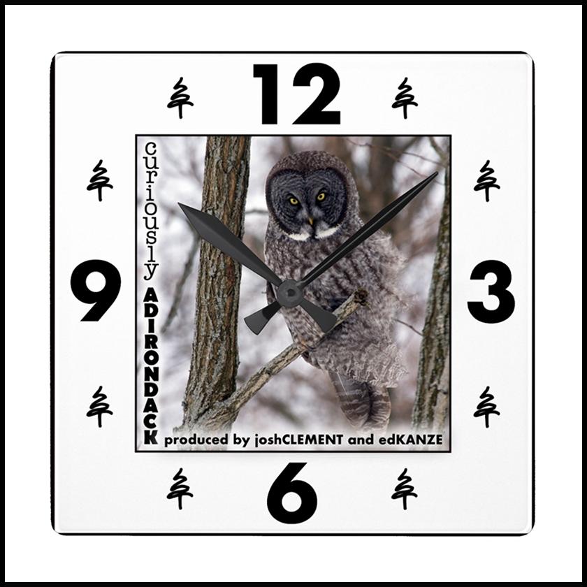 OWL-CLOCK.png
