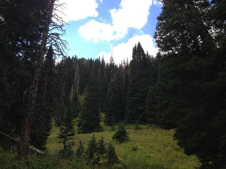Big_Cottonwood_Canyon_00.jpg