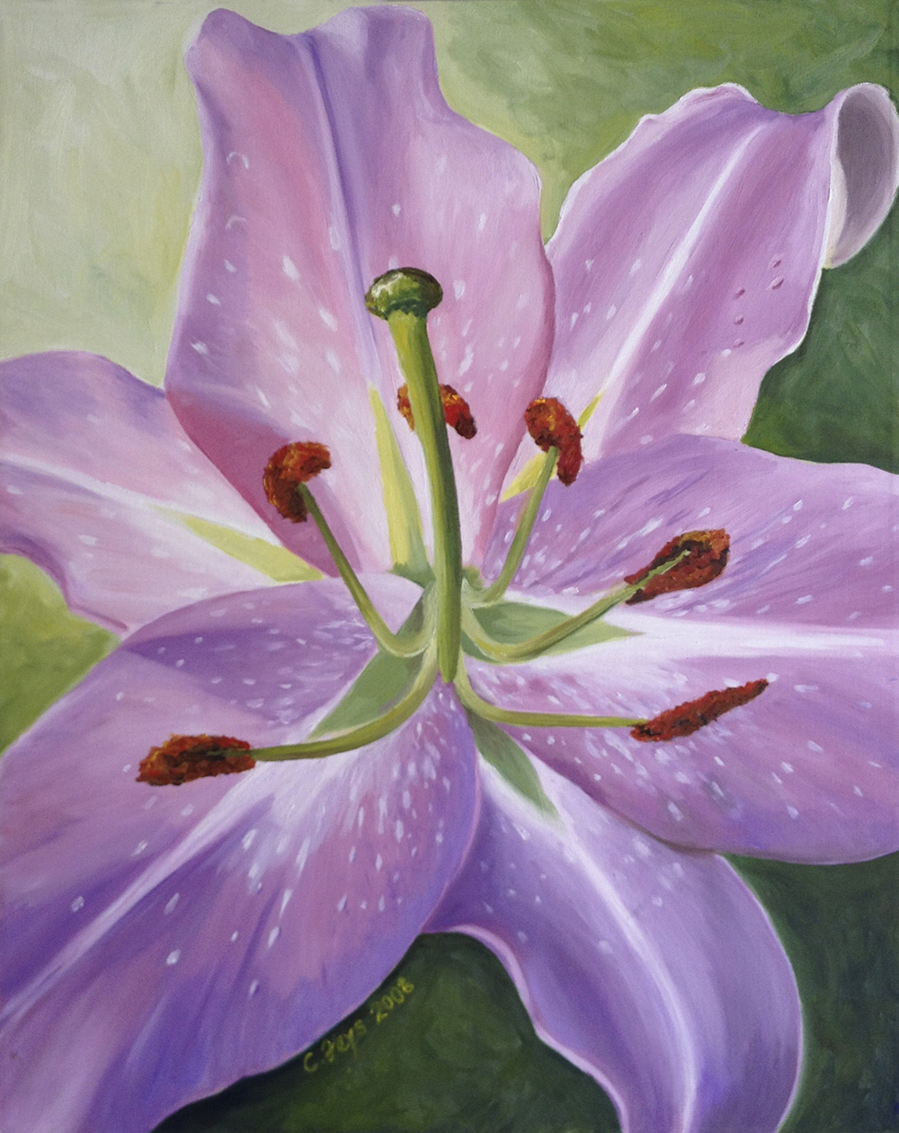 Lily, 2008