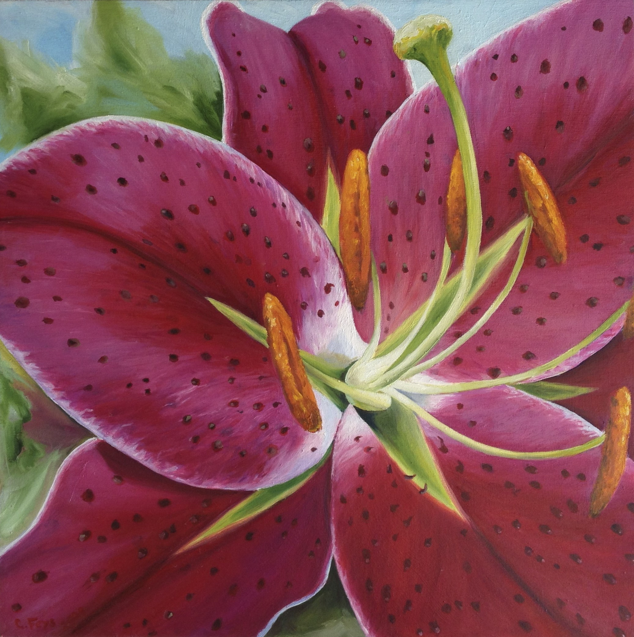 Lily, 2009