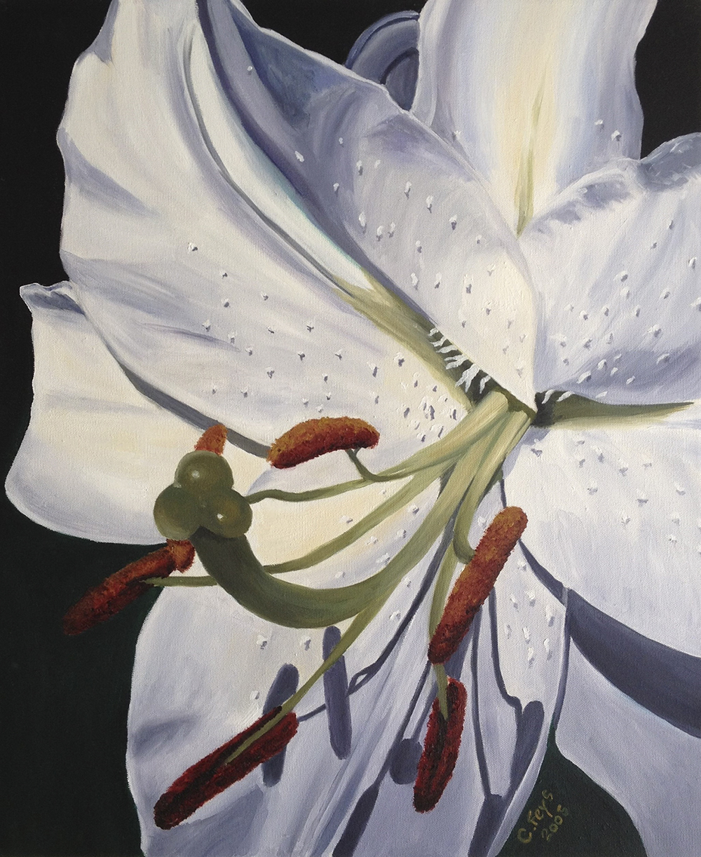 Lily, 2005