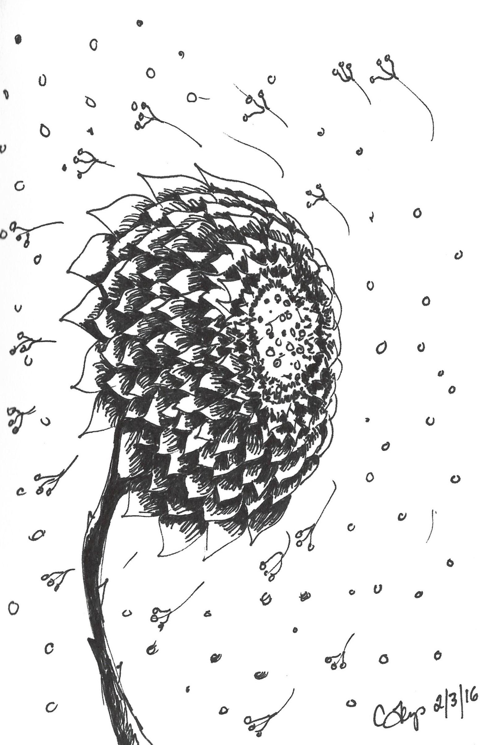 flower in the wind-scan.jpg