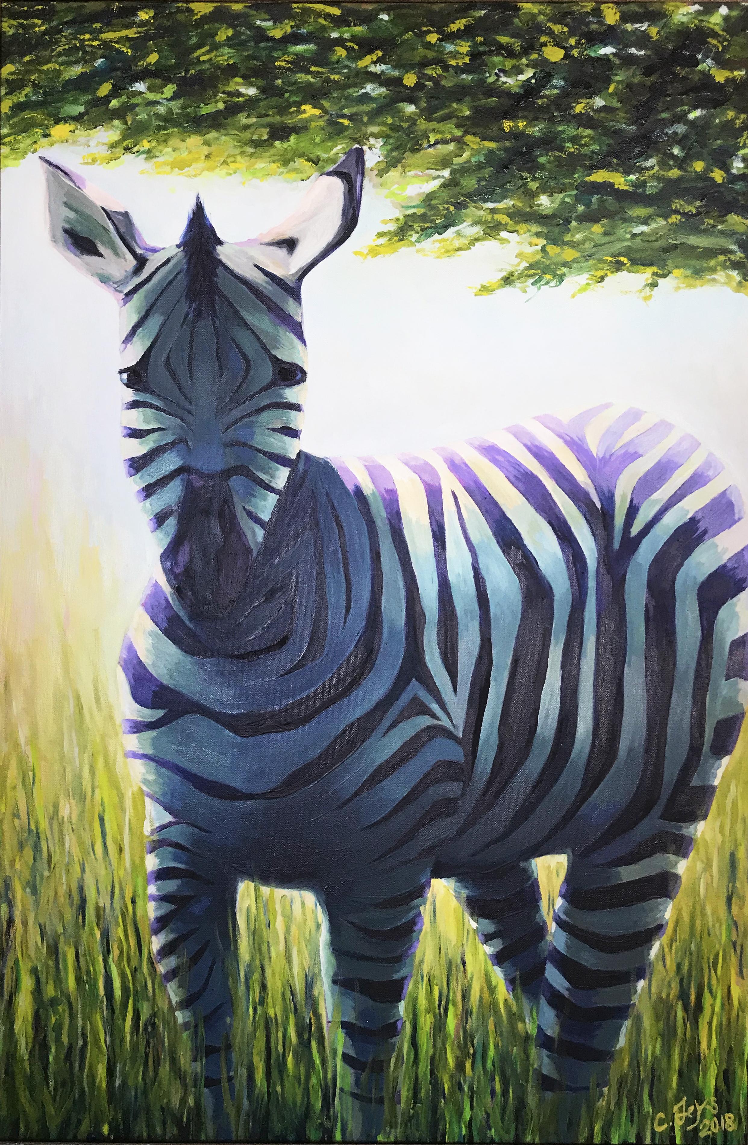 Zebra, Nakuru Kenya, 2018