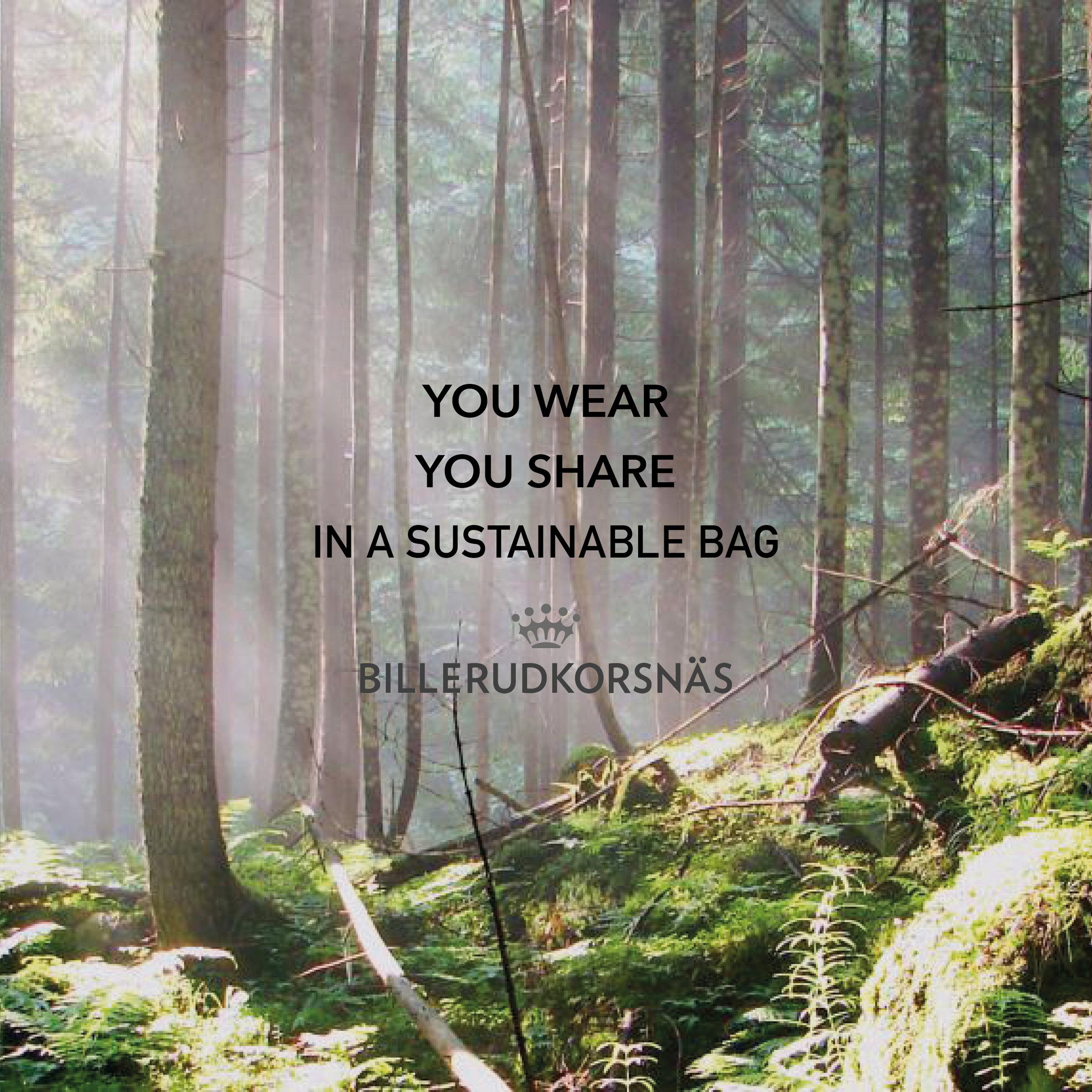 Billerudkornäs bidrar med miljösmarta kassar  www.billerudkorsnas.se