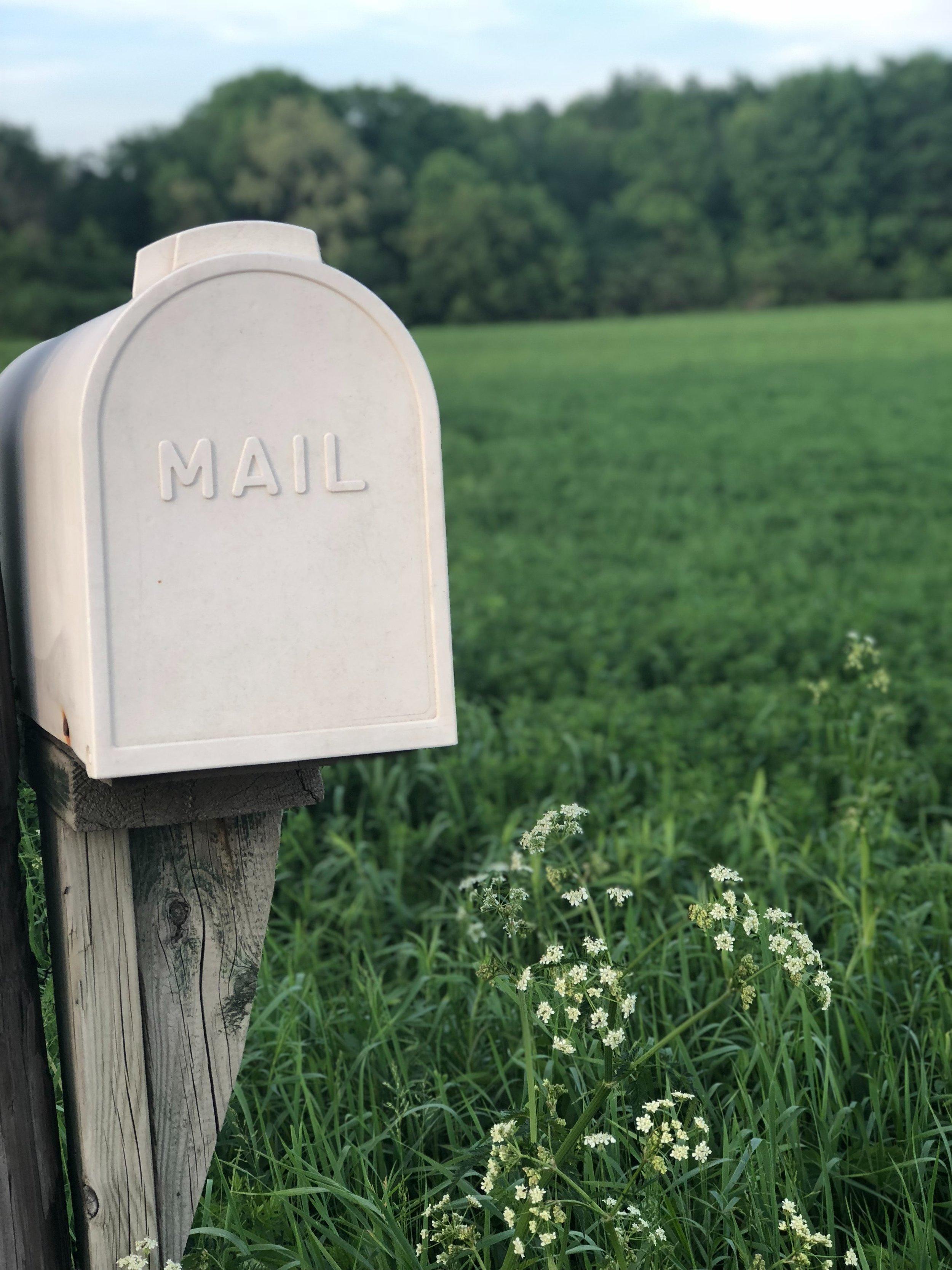mailboxgreen.jpg