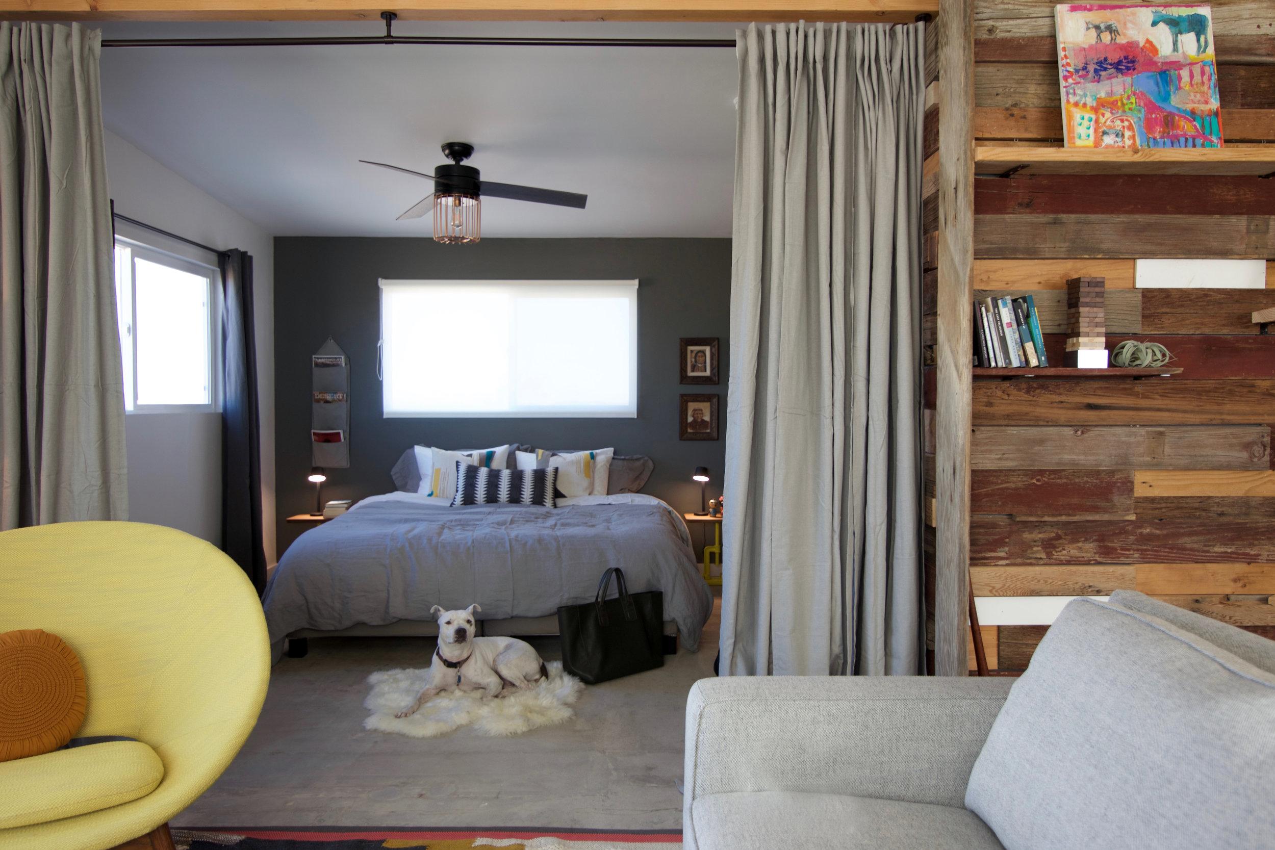 PMC-living-bedroom-dog.jpg