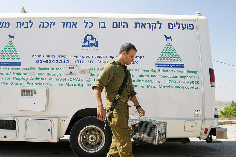 A helpful soldier bringing a cat to the clinic during CHAI's West Bank animal rescue. (photo by Avi Hirschfield)
