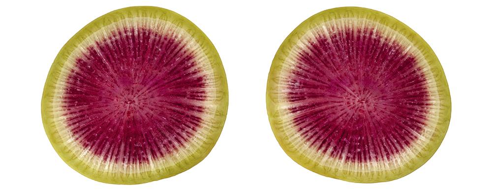 sliced watermelon radish