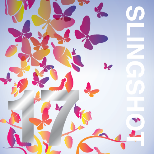 - JWI is proud to be recognized in the 2017 Slingshot Guide, the foremost comprehensive resource into today's most groundbreaking and significant organizations, projects and programs of the North American Jewish community. Inclusion in the Guide acknowledge's JWI as one of the best drivers of future Jewish life and engagement.