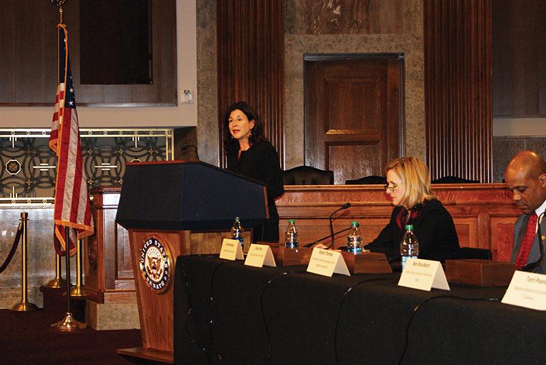 2012 VAWA senate briefing.jpg