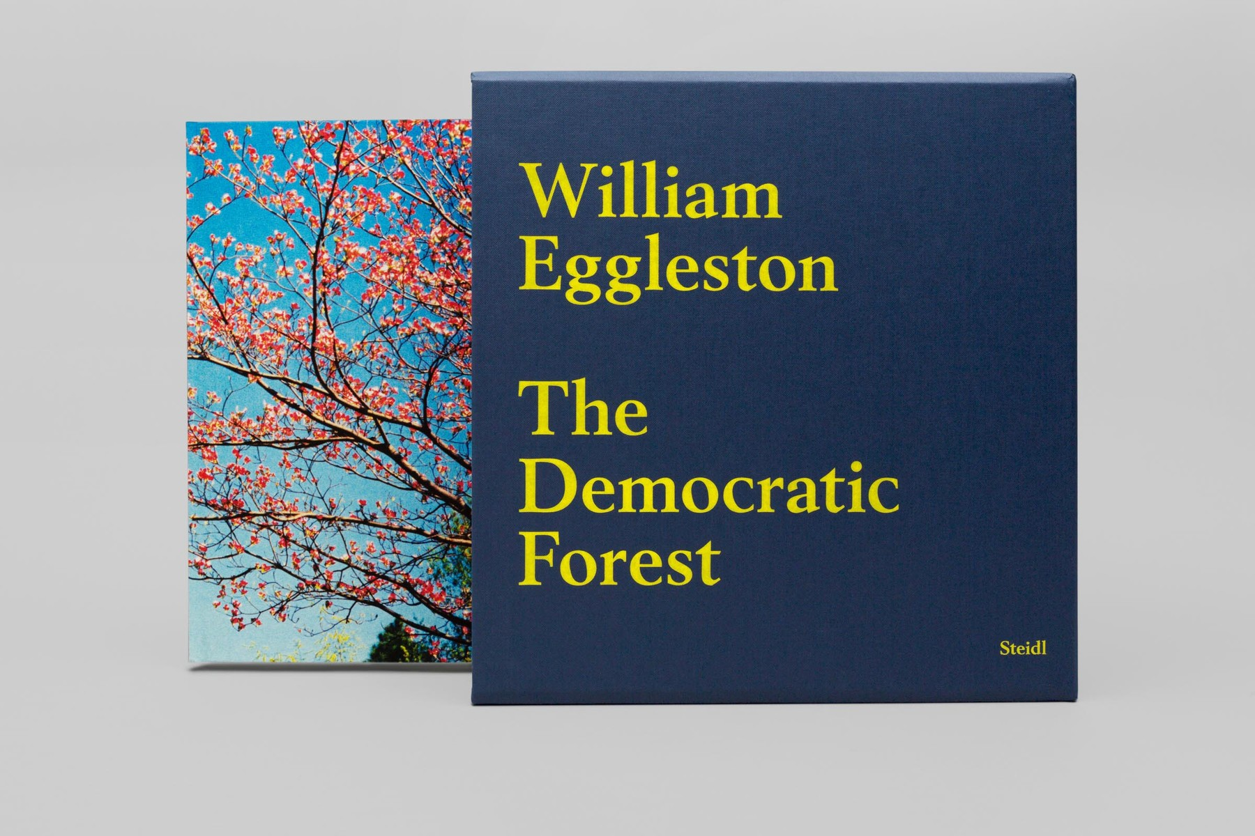 william-eggleston-the-democratic-forest-01.jpg.jpg