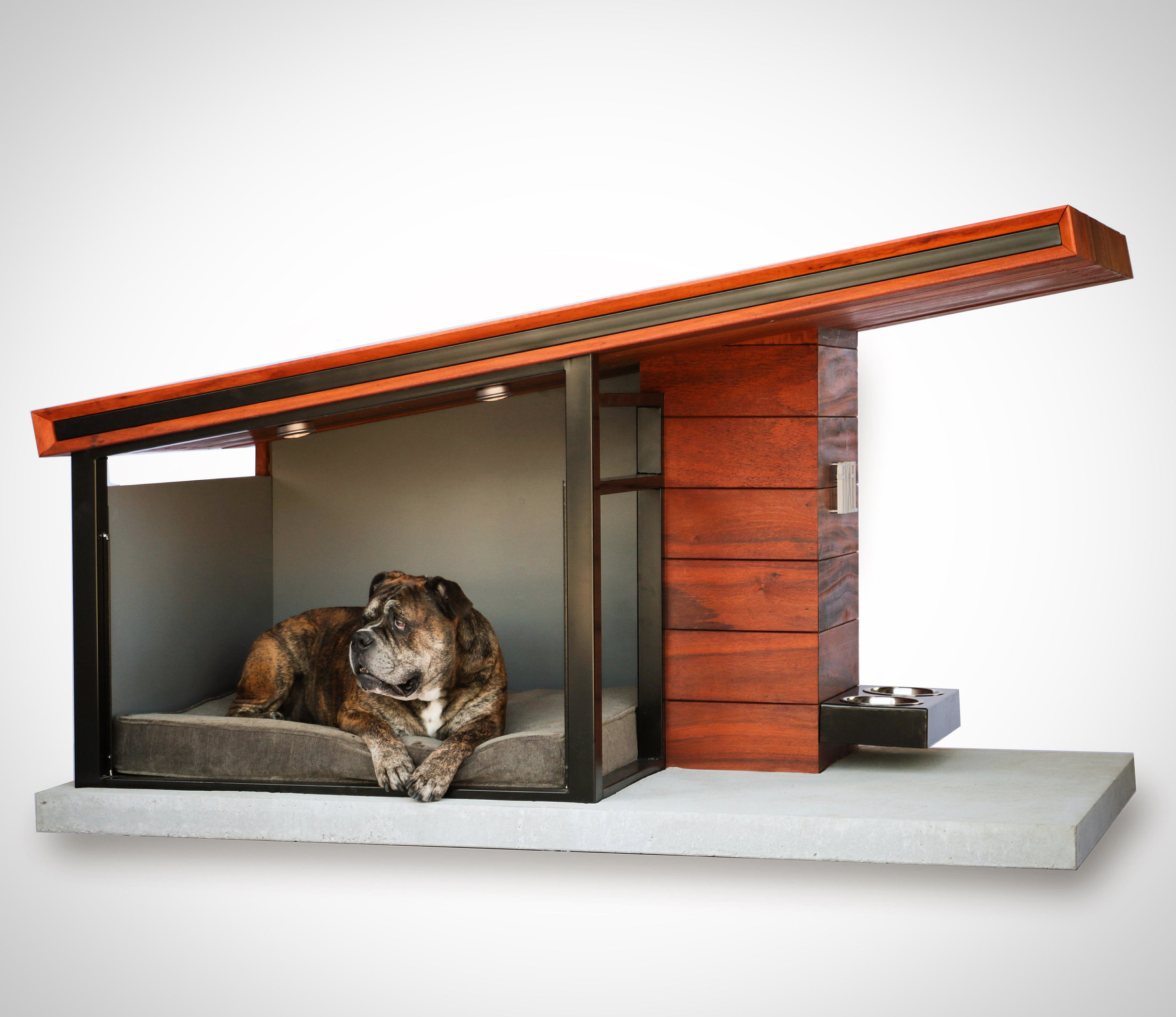 dog+haus+inside.jpg