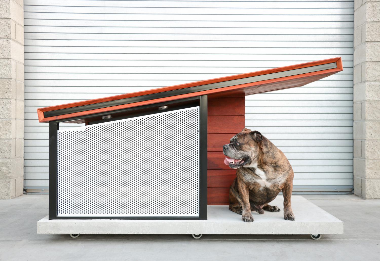 DOG+HAUS+OUTDOOR+1.jpg