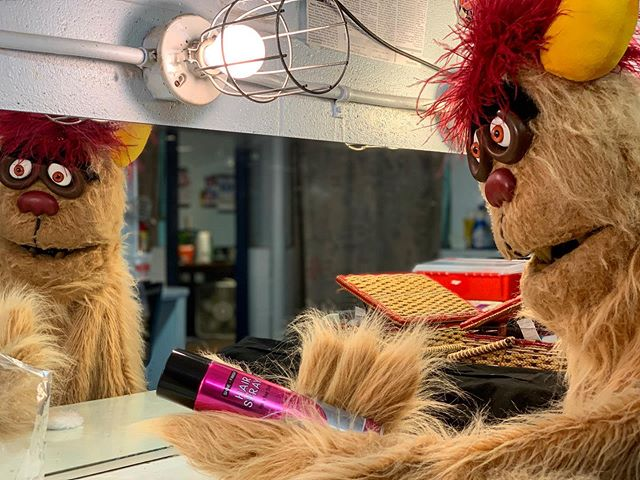 🔸AVENUE Q OPENS THIS FRIDAY🔸 . It's TECH WEEK for our friends who live on Avenue Q so they thought they'd share some of their Tech Week Essentials! Trekkie Monster can't have anyone poking and pulling at his fur, so he likes to take some time during Tech Week to make sure he has what he needs to groom himself!  What do you do to prepare for a show?? Comment below! And don't forget to purchase your tickets for AVENUE Q at www.paplayhouse.org or by calling 610.865.6665 . . . #AvenueQ #PAPlayhouse #PennsylvaniaPlayhouse #TechWeek #TechWeekEssentials #actor #actorlife #TrekkieMonster #LiveTheatre #LehighValley #LehighValleyStage #hairspray