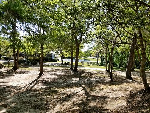 View through the trees to Lake Johnstone