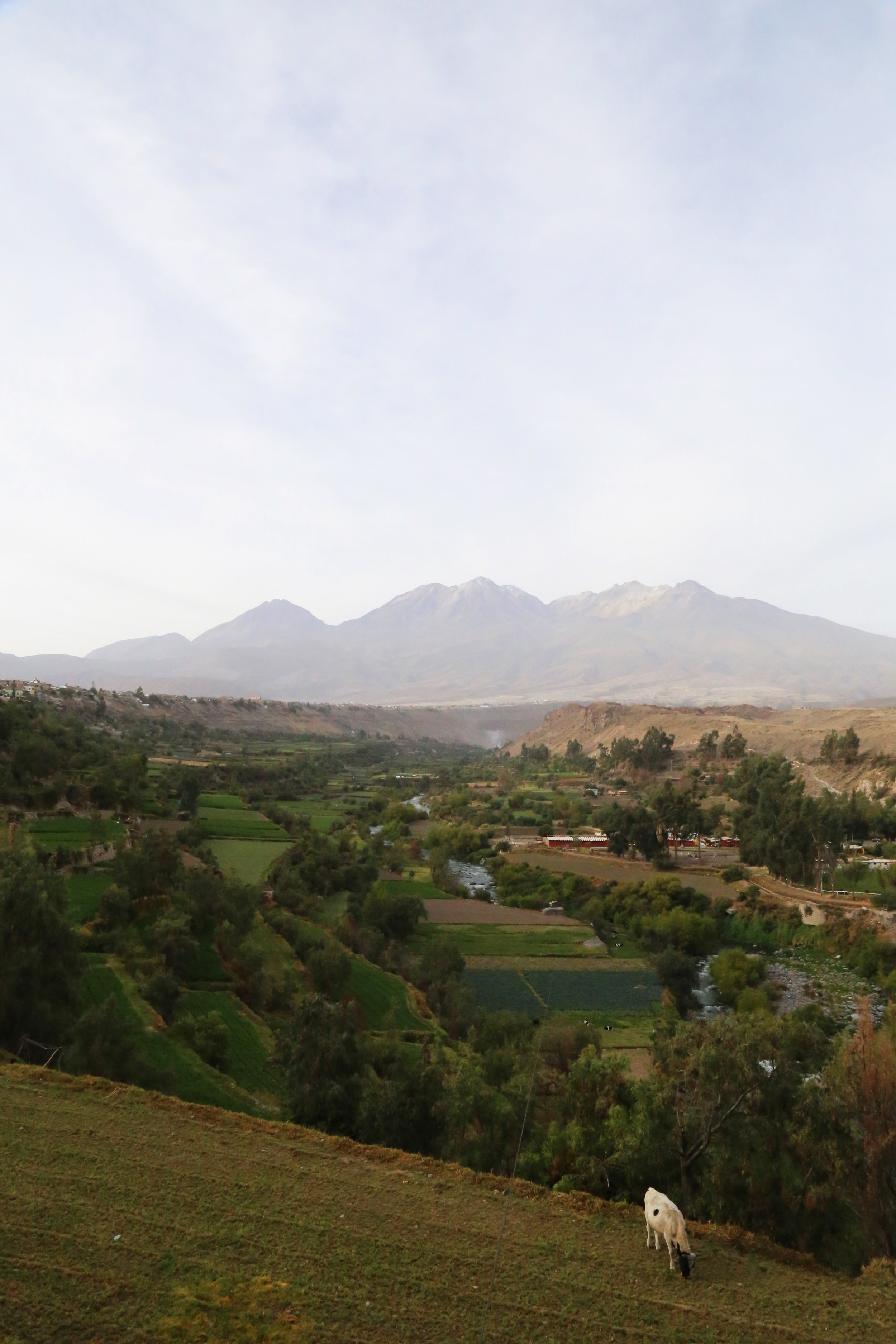 The Chanchani volcano is one of three visible from Arequipa. This photo was taken just outside the city at a viewpoint called Mirador Carmen Alto.