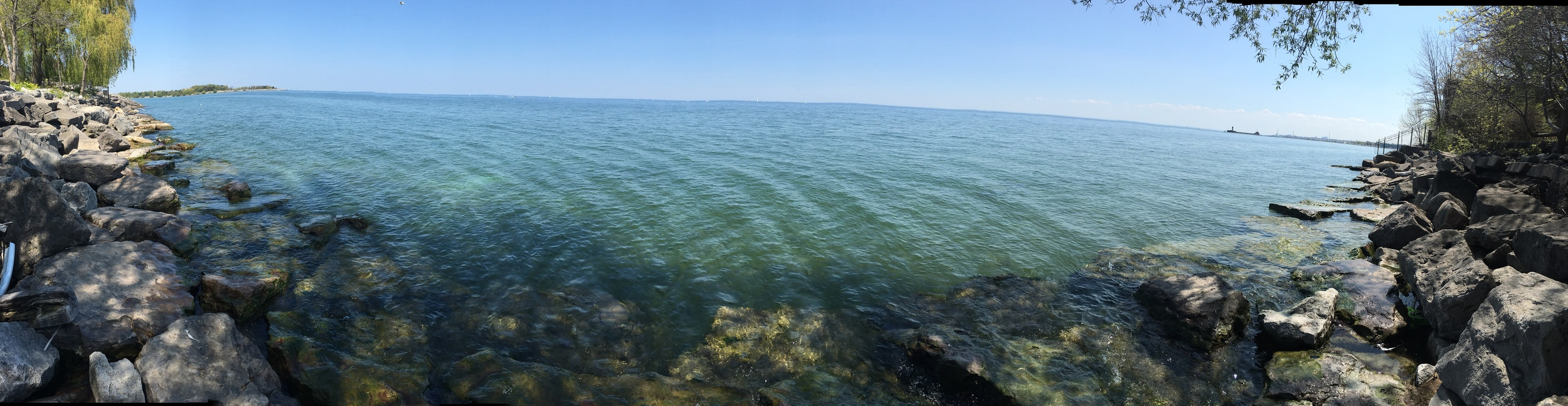 This, my friends, is Lake Ontario. Many mornings, my mom and I would grab maple lattes (how original, I know) and walk around the Lake, reminiscing about old memories in Canada.