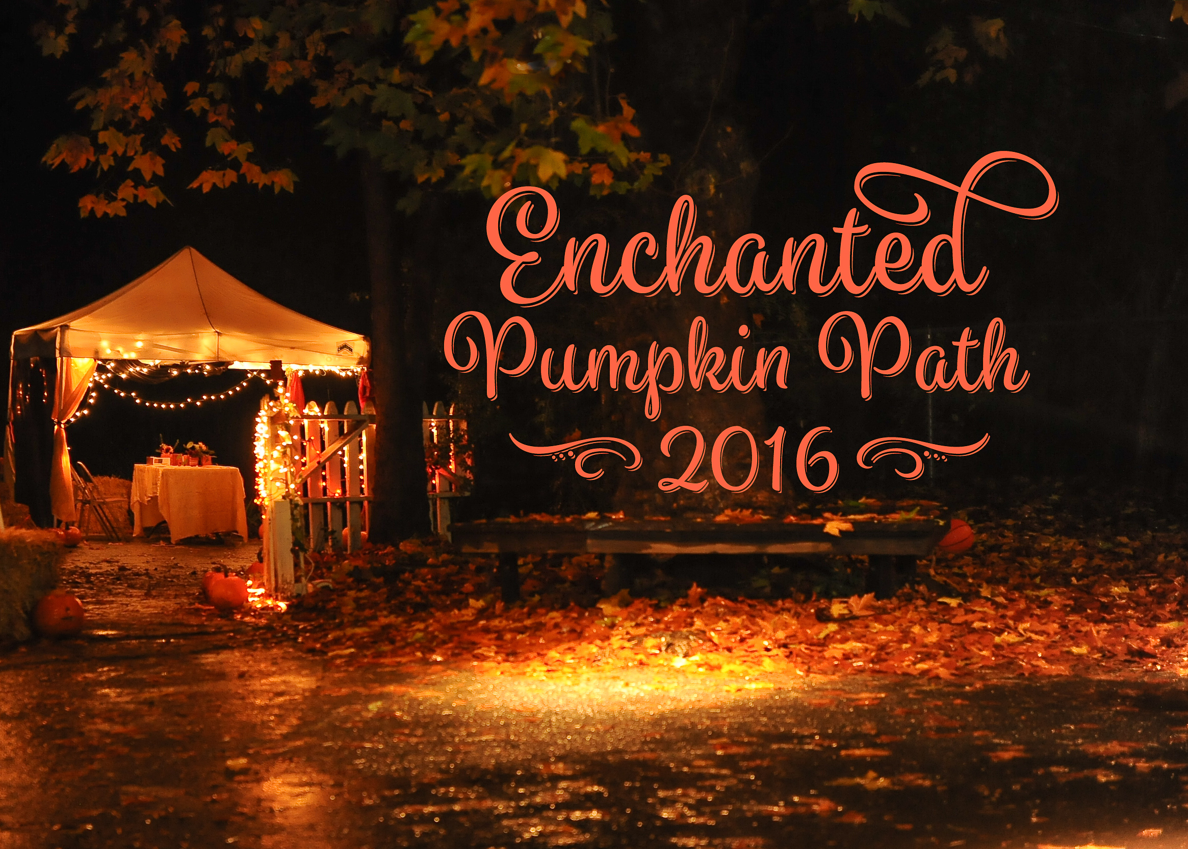 Pumpkin Path 2016-1.jpg