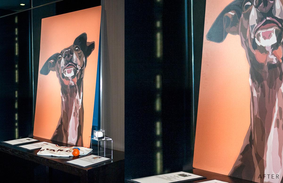Nikki-Novi-Giants-Dog-Painting-Product-Photo_01_Before.jpg