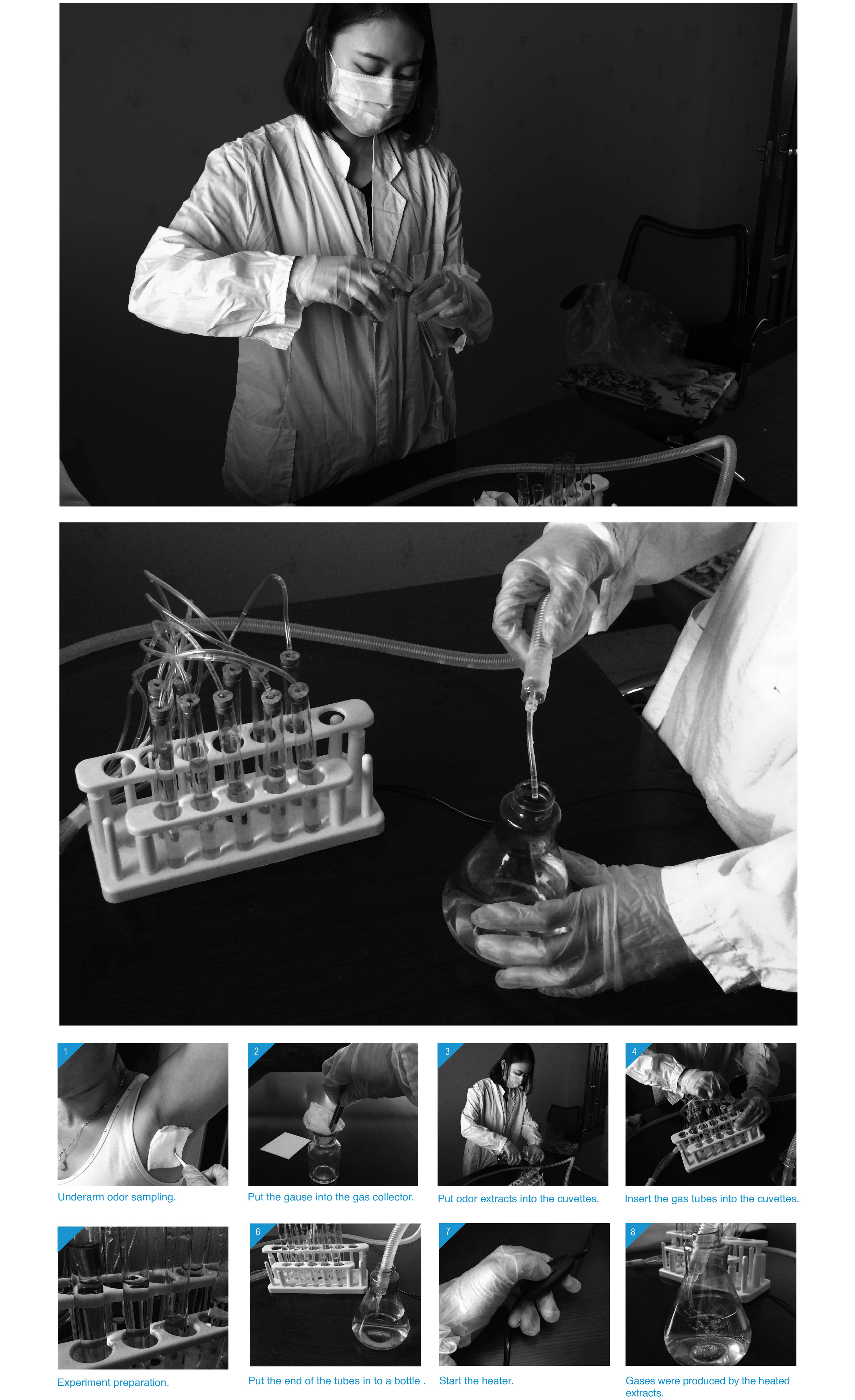 experiment2a.jpg