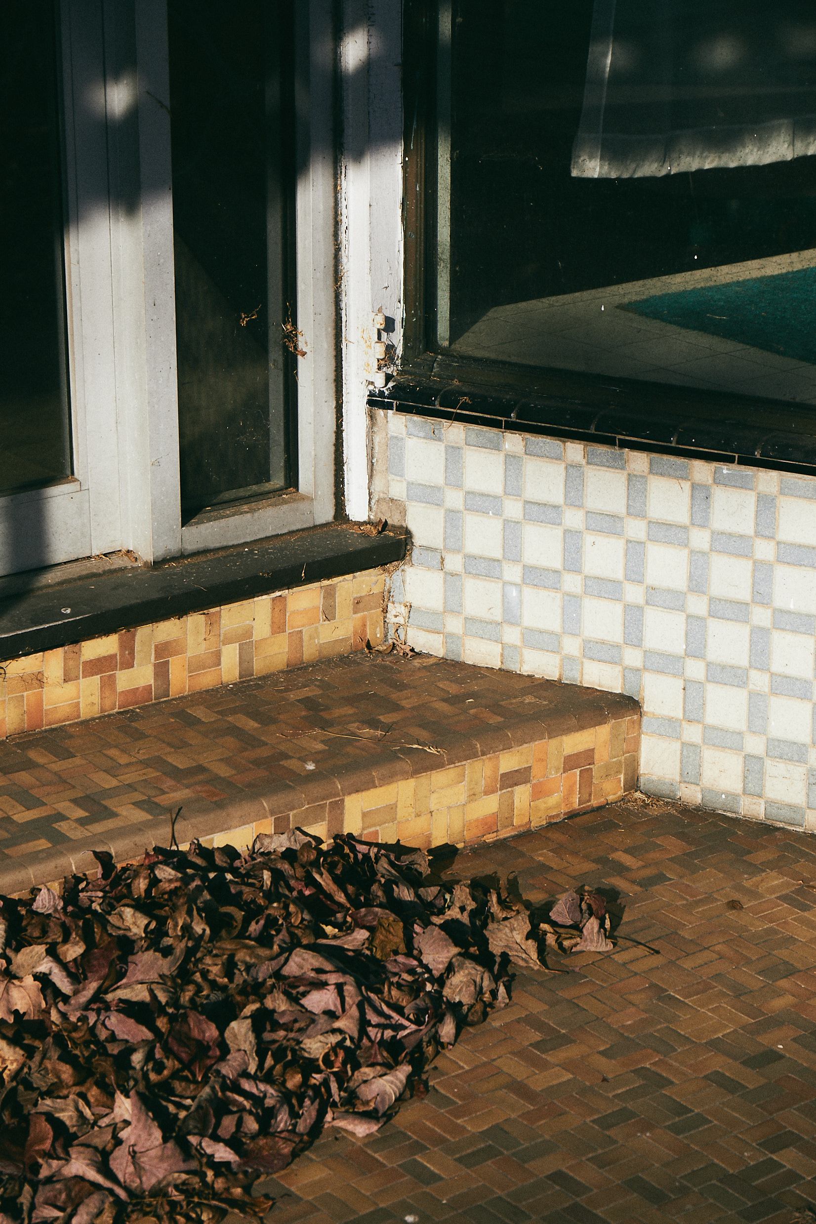 Leaves and Tiles