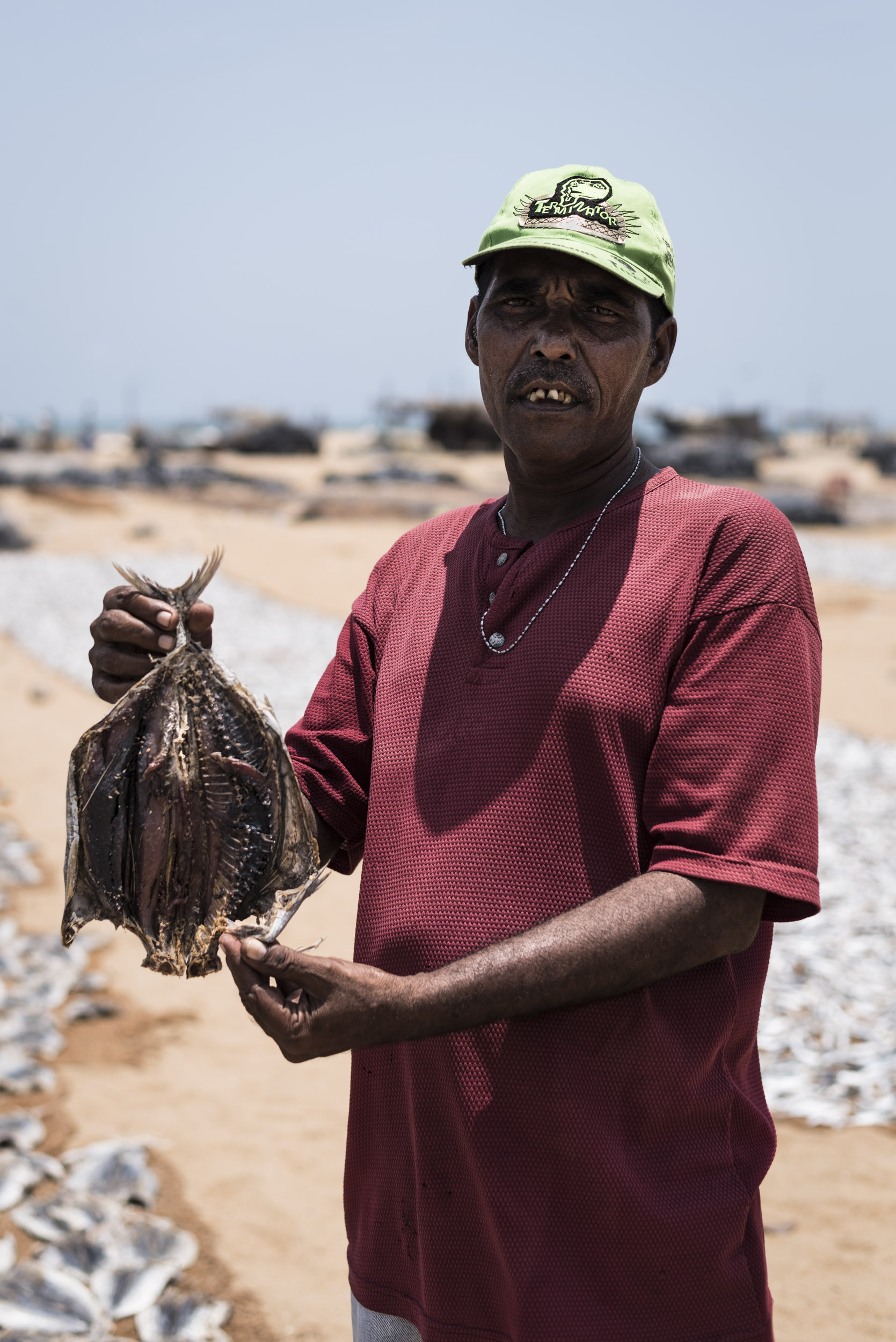 Negombo Fish Market (V)