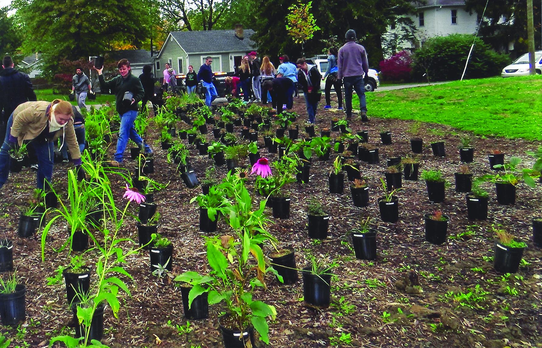 University Heights_Planting.jpg