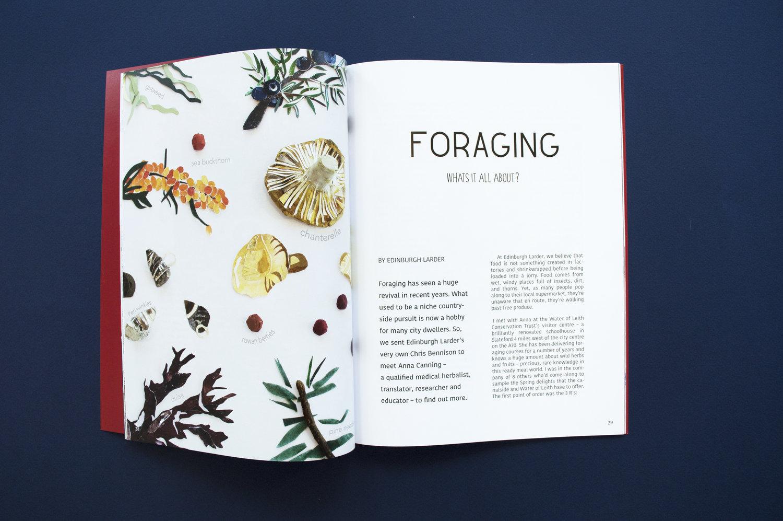 forage+one.jpg