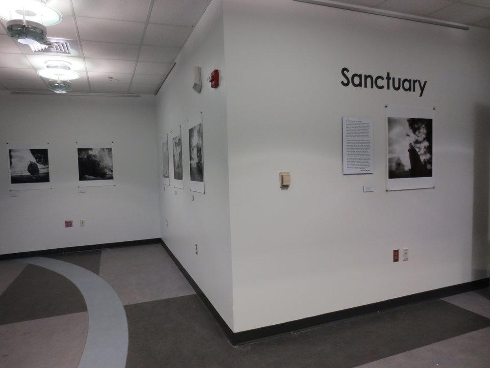 STC Bldg B Art Gallery #2